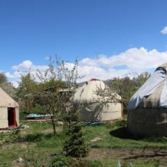 Отель B&B at Bailanysh Кыргызстан, Каракол - отзывы, цены и фото номеров - забронировать отель B&B at Bailanysh онлайн фото 6
