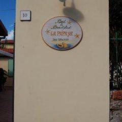 Отель B&B La Papaya Италия, Пиза - отзывы, цены и фото номеров - забронировать отель B&B La Papaya онлайн развлечения