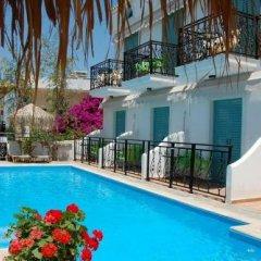 Hotel Alexandra бассейн фото 3