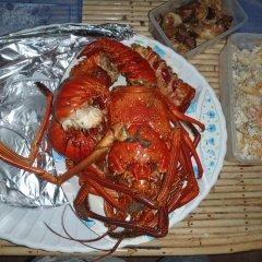 Imagination Island in Kukundu, Solomon Islands from 131$, photos, reviews - zenhotels.com meals photo 2