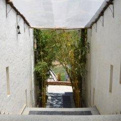 Отель Kumbhalgarh Forest Retreat фото 15