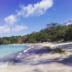 Отель Nature in portland Ямайка, Порт Антонио - отзывы, цены и фото номеров - забронировать отель Nature in portland онлайн пляж