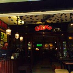 Gecko Hotel гостиничный бар