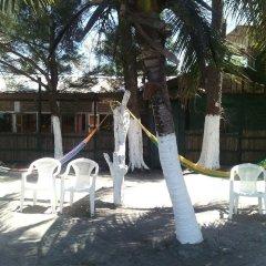 Отель Caribbean Coral Inn Tela Гондурас, Тела - отзывы, цены и фото номеров - забронировать отель Caribbean Coral Inn Tela онлайн помещение для мероприятий