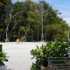 Отель Najaf Lake View Guesthouse Мальдивы, Северный атолл Мале - отзывы, цены и фото номеров - забронировать отель Najaf Lake View Guesthouse онлайн пляж