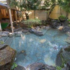 Отель Wataya Besso Кашима бассейн фото 2