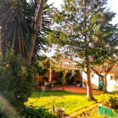 Отель SPH - Sintra Pine House фото 2
