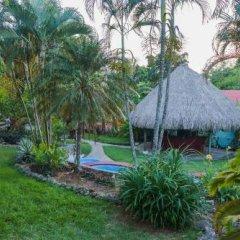 Отель Colibri Hill Resort Гондурас, Остров Утила - отзывы, цены и фото номеров - забронировать отель Colibri Hill Resort онлайн