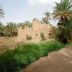 Отель Riad Tagmadart Ferme D'hôte Марокко, Загора - отзывы, цены и фото номеров - забронировать отель Riad Tagmadart Ferme D'hôte онлайн фото 2