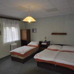 Отель Pension Sparta комната для гостей