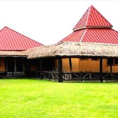 Отель Rainforest Lodge фото 2