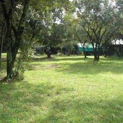 Отель Enkolong Tented Camp фото 8