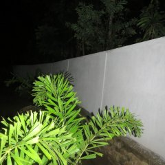 Thisara Guest Hotel Rooms фото 6
