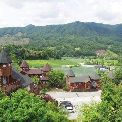 Отель Elf Pension Южная Корея, Пхёнчан - отзывы, цены и фото номеров - забронировать отель Elf Pension онлайн фото 2