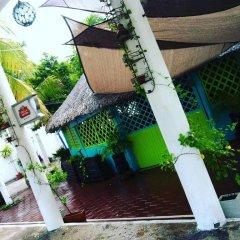 Отель Hostel Kiosco Verde Folk Room Мексика, Канкун - отзывы, цены и фото номеров - забронировать отель Hostel Kiosco Verde Folk Room онлайн