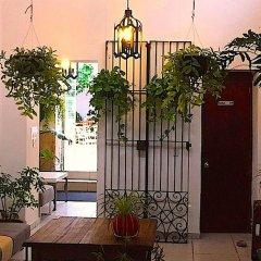 Отель Casa Canario Bed & Breakfast фото 7