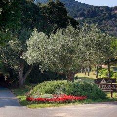 Отель Camping Le Pianacce Кастаньето-Кардуччи фото 6