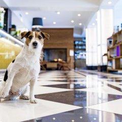 Отель Lilla Roberts Финляндия, Хельсинки - 3 отзыва об отеле, цены и фото номеров - забронировать отель Lilla Roberts онлайн с домашними животными