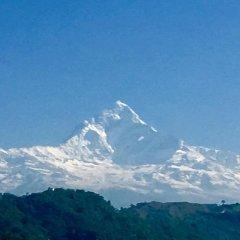Отель Royal Palm Resort Непал, Покхара - отзывы, цены и фото номеров - забронировать отель Royal Palm Resort онлайн
