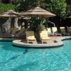 Отель The Alexander Miami Beach бассейн фото 2