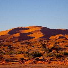 Отель Kam Kam Dunes Марокко, Мерзуга - отзывы, цены и фото номеров - забронировать отель Kam Kam Dunes онлайн городской автобус