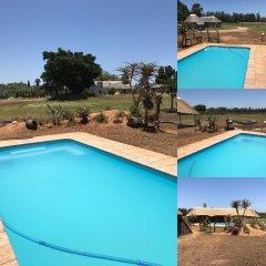 Отель Addo Wildlife Южная Африка, Аддо - отзывы, цены и фото номеров - забронировать отель Addo Wildlife онлайн бассейн фото 2