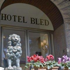 Hotel Bled развлечения