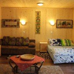 Отель Willa Emma Поронин комната для гостей фото 2