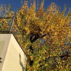Отель AJO Apartments Danube Австрия, Вена - отзывы, цены и фото номеров - забронировать отель AJO Apartments Danube онлайн фото 9