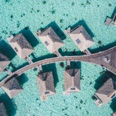 Отель Hilton Moorea Lagoon Resort and Spa бассейн фото 3