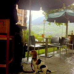 Отель Aparthotel Nou Vielha с домашними животными
