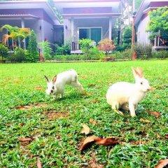 Отель Pana Long Beach Resort Ланта с домашними животными