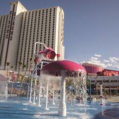 Circus Circus Hotel, Casino & Theme Park бассейн фото 2