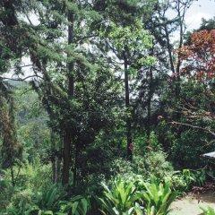 Отель Villa Republic Bandarawela фото 5