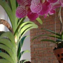 Отель Flower Garden Homestay Хойан фото 3
