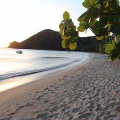 Отель Korovou Eco Tour Resort Фиджи, Матаялеву - отзывы, цены и фото номеров - забронировать отель Korovou Eco Tour Resort онлайн пляж