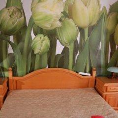 Stivan Iskar Hotel комната для гостей