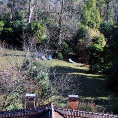 Отель Albergo Villa Azalea Италия, Вербания - отзывы, цены и фото номеров - забронировать отель Albergo Villa Azalea онлайн фото 12