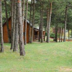 Отель Camping Fontfreda