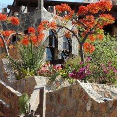 Отель Castillo Blarney Inn Мексика, Педрегал - отзывы, цены и фото номеров - забронировать отель Castillo Blarney Inn онлайн