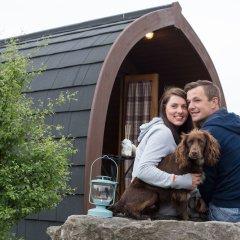 Отель The Little Hide - Grown Up Glamping с домашними животными