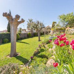 Отель Villa Mas Guelo Испания, Бланес - отзывы, цены и фото номеров - забронировать отель Villa Mas Guelo онлайн фото 2