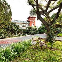 Belconti Resort Hotel - All Inclusive фото 10