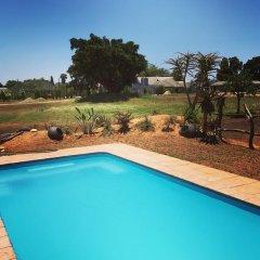 Отель Addo Wildlife Южная Африка, Аддо - отзывы, цены и фото номеров - забронировать отель Addo Wildlife онлайн бассейн
