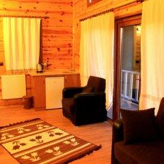 Ayder Cise Dag Evleri Турция, Чамлыхемшин - отзывы, цены и фото номеров - забронировать отель Ayder Cise Dag Evleri онлайн удобства в номере фото 2