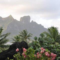 Отель Le Crusoe Французская Полинезия, Бора-Бора - отзывы, цены и фото номеров - забронировать отель Le Crusoe онлайн