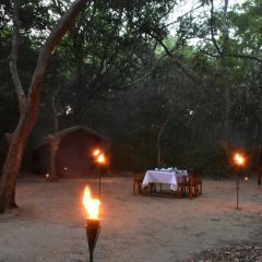 Отель Mahoora Tented Safari Camp - Kumana Шри-Ланка, Яла - отзывы, цены и фото номеров - забронировать отель Mahoora Tented Safari Camp - Kumana онлайн фото 10