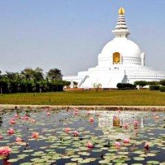 Отель Stupa Непал, Лумбини - отзывы, цены и фото номеров - забронировать отель Stupa онлайн детские мероприятия фото 2