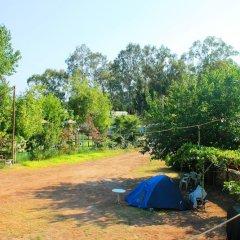 Medusa Camping Турция, Патара - отзывы, цены и фото номеров - забронировать отель Medusa Camping онлайн фото 2