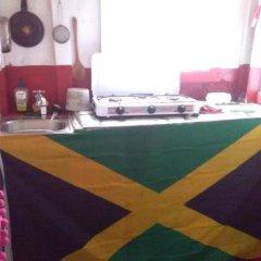 Отель Nature in portland Ямайка, Порт Антонио - отзывы, цены и фото номеров - забронировать отель Nature in portland онлайн гостиничный бар